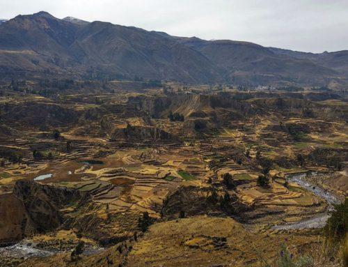 El Cañón del Colca: reino del cóndor andino