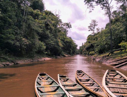 De Iquitos al Amazonas: 3 días en la selva peruana